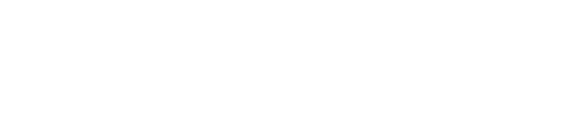 Audit Assistant